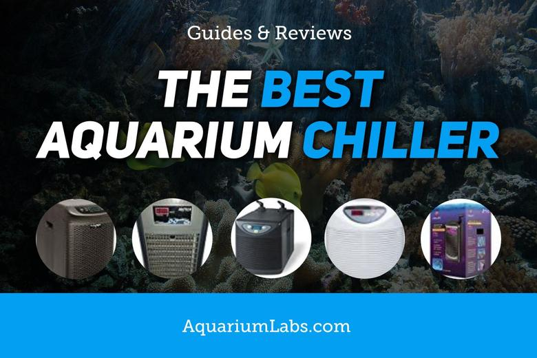 Best Aquarium Water Chiller