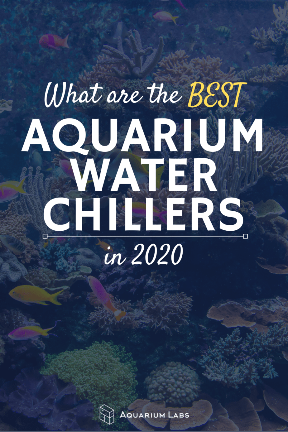 best aquarium water chillers