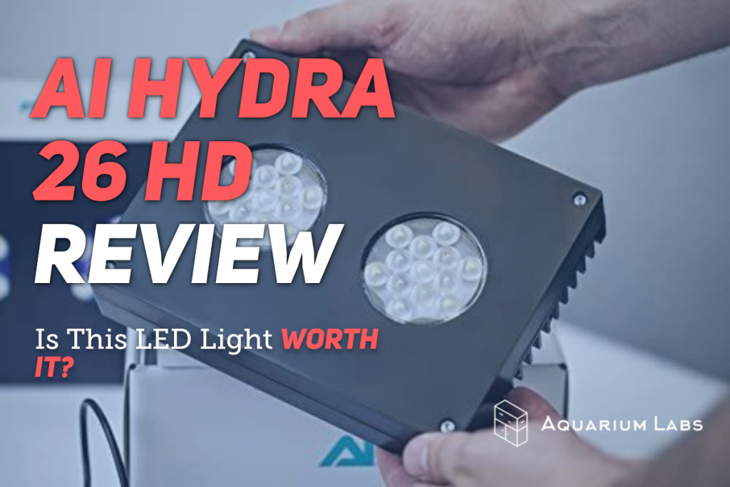 AI Hydra 26 Review