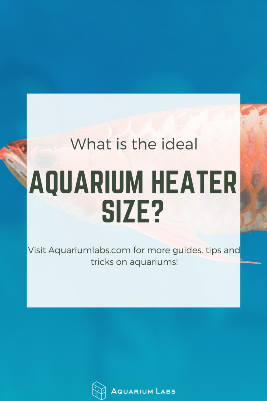 ideal aquarium heater size
