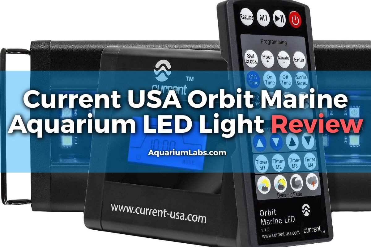 Current-USA-Orbit-Marine-Aquarium-LED-Light-Review-Featured-Image