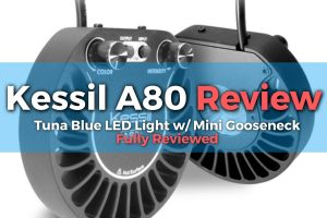 Kessil-A80-Tuna-Blue-LED-Light-Review-Featured-Image