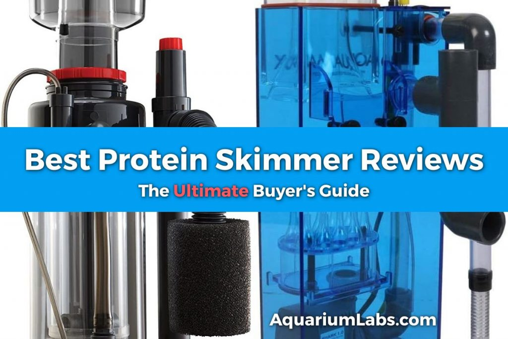Best Protein Skimmer Reviews