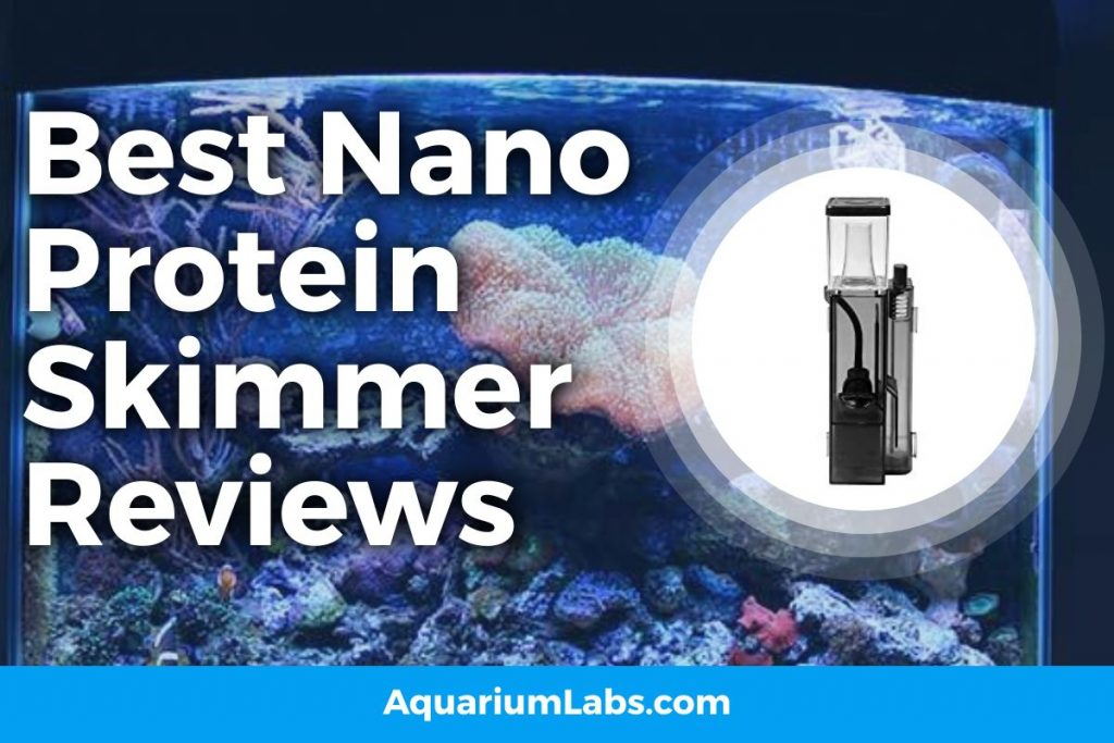 Best Nano Protein Skimmer Reviews Featured Image