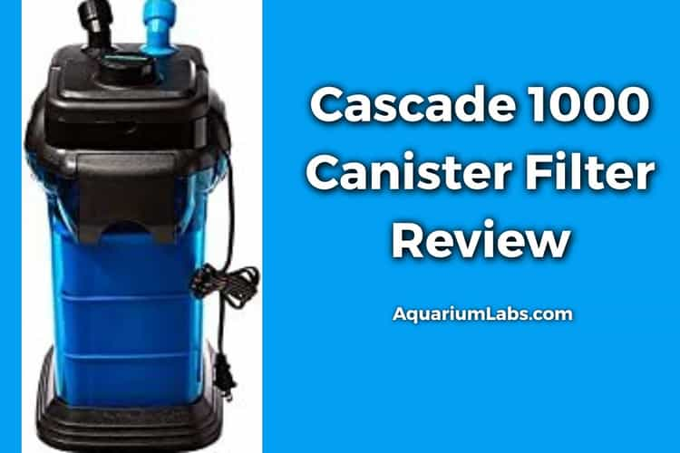 Cascade 1000 Canister Filter Review Featured Image